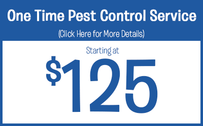 One Time Pest Control Service Treatments starting @ $125