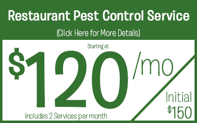 Full Service Restaurant  starting @ 120 a month, includes 2 monthly scheduled services
