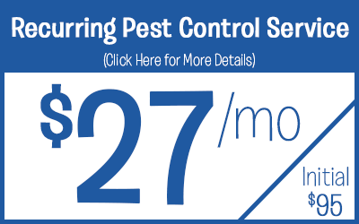Residential Pest Control Service Protection @ $27 a month